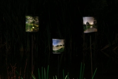 Minoru-Public-Art-Night-10