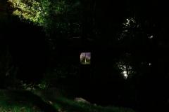 Minoru-Public-Art-Night-11