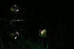 Minoru-Public-Art-Night-12