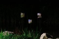 Minoru-Public-Art-Night-9