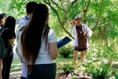 Minoru-Plant-Walk-small-10