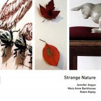2010-strange-nature