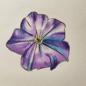 Flower-study