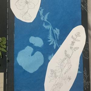 Rachel herbarium 2