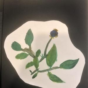 Shirley watercolour