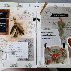 herbarium-samantha(3)